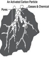 Carbon Structure