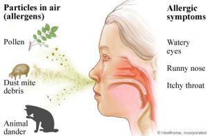 Air Borne Allergens
